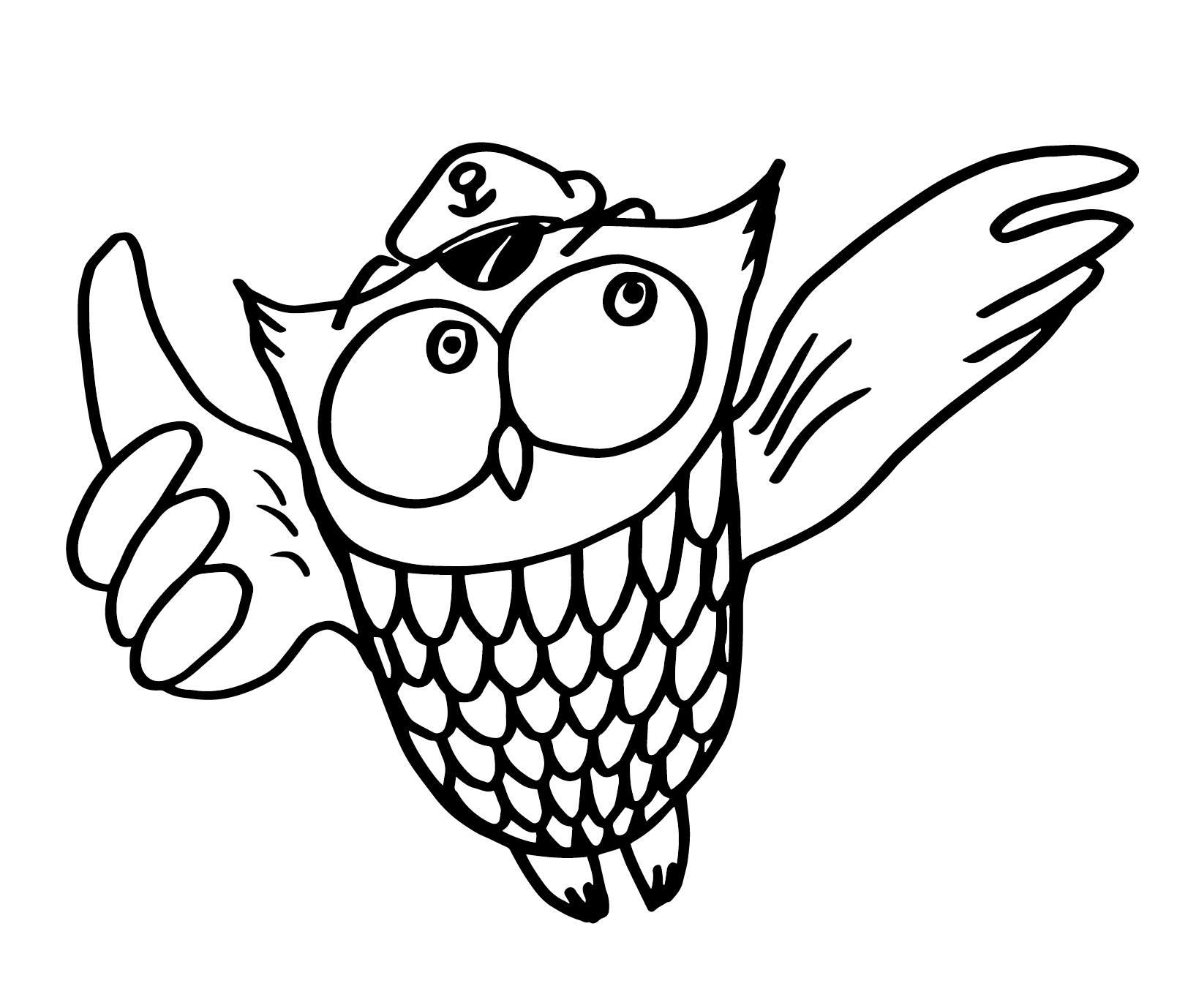owlsailor (1)