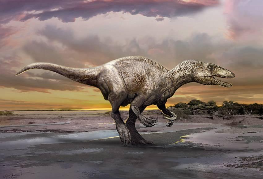 murusraptor-barrosaensis