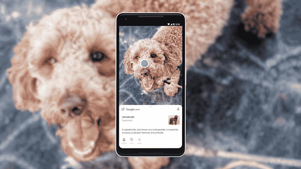 Смартфони Xiaomi отримають Google Lens