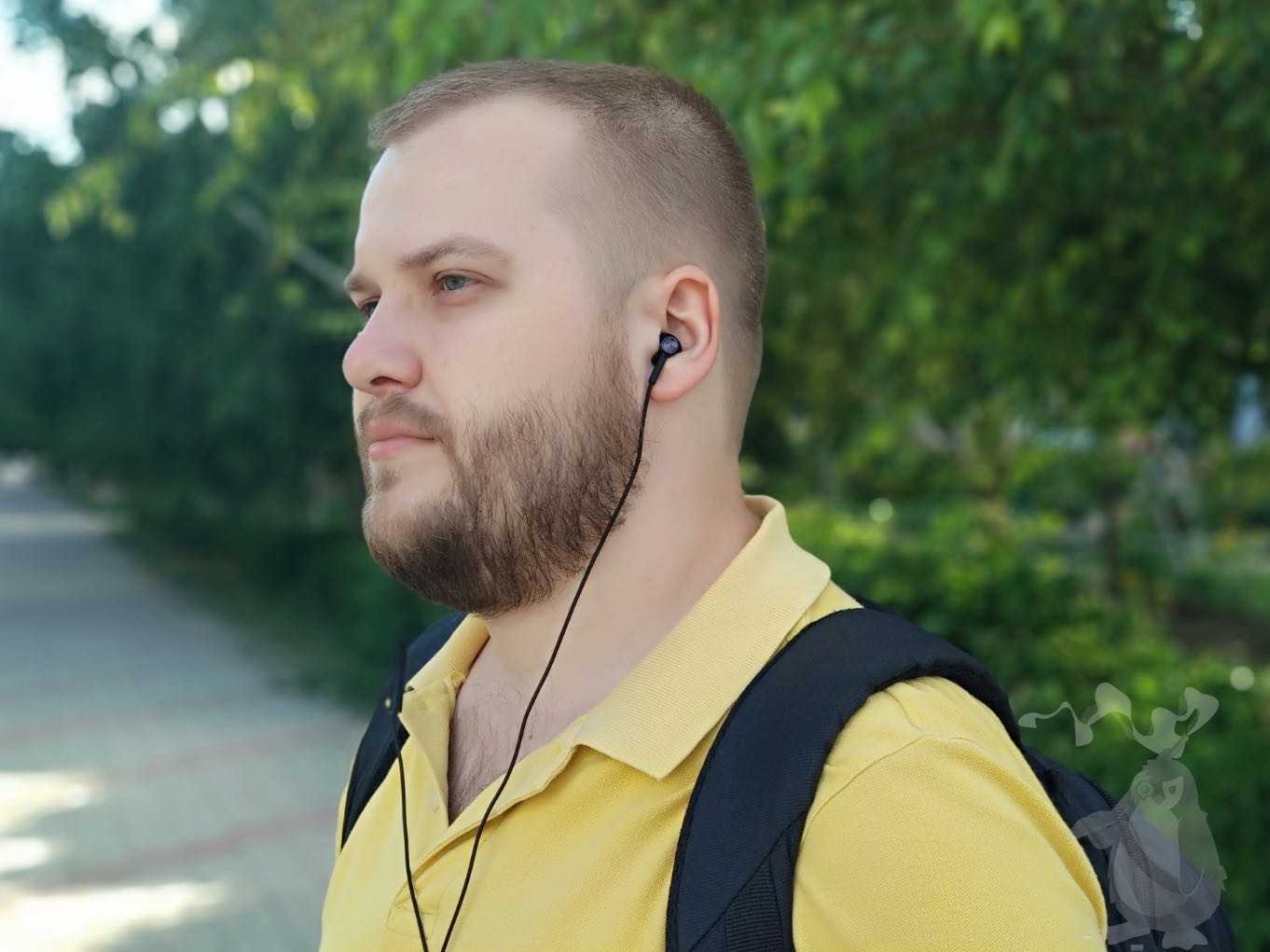 Xiaomi Dual Drivers In-ear Earphones