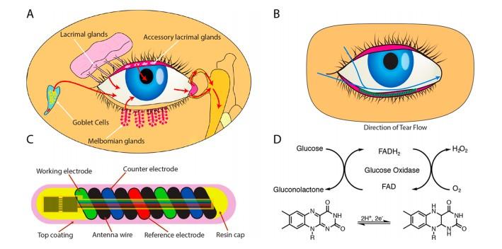 NovioSense розробляє датчик для виміру глюкози в сльозах