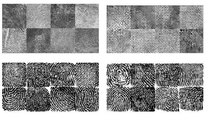 Вчені створили універсальний відбиток пальця