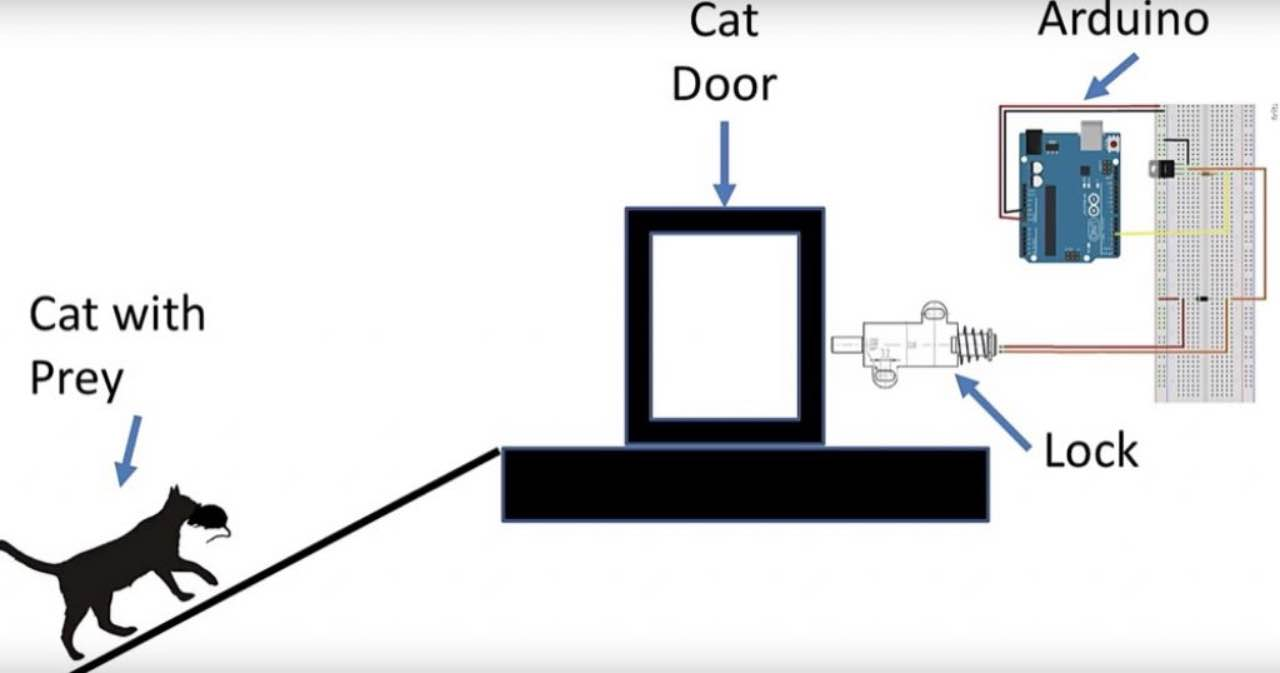 Інженер Amazon створив двері з підтримкою штучного інтелекту