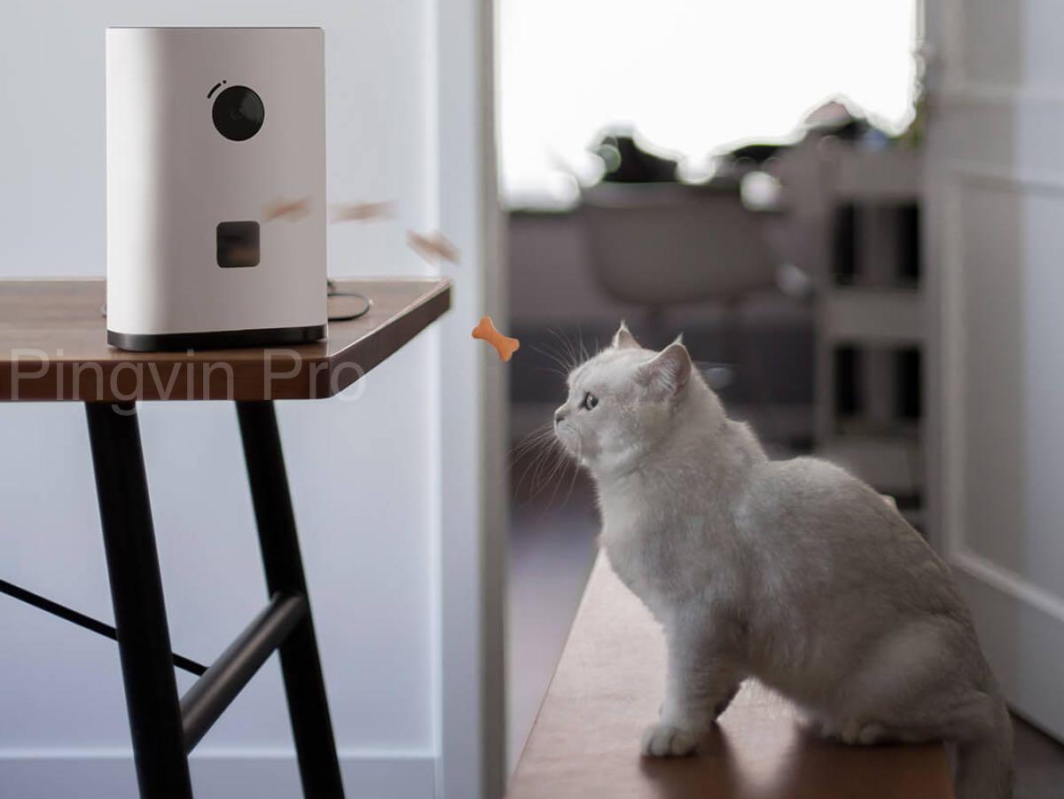 Pawbby Smart Pet Snack Machine