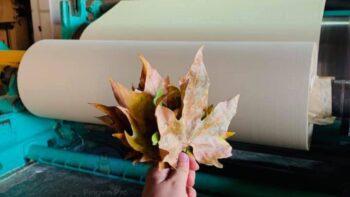 RE-leaf PAPER